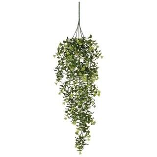 "Boxwood & Berry Hanging Bush Stem - Green - 8""L x 8""W x 32""H"