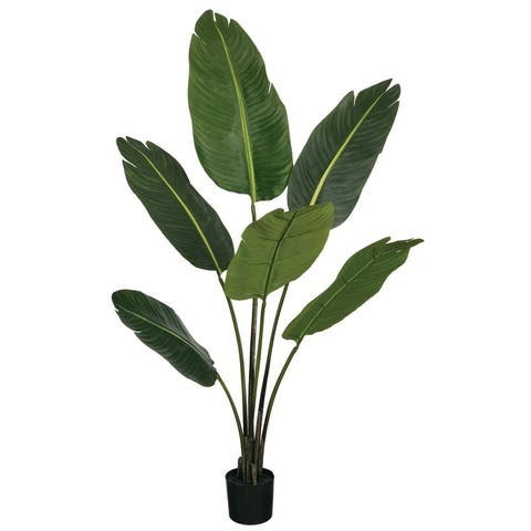"50""h Bird Of Paradise Potted Foliage - Green - 32""L x 32""W x 4' 2""H"