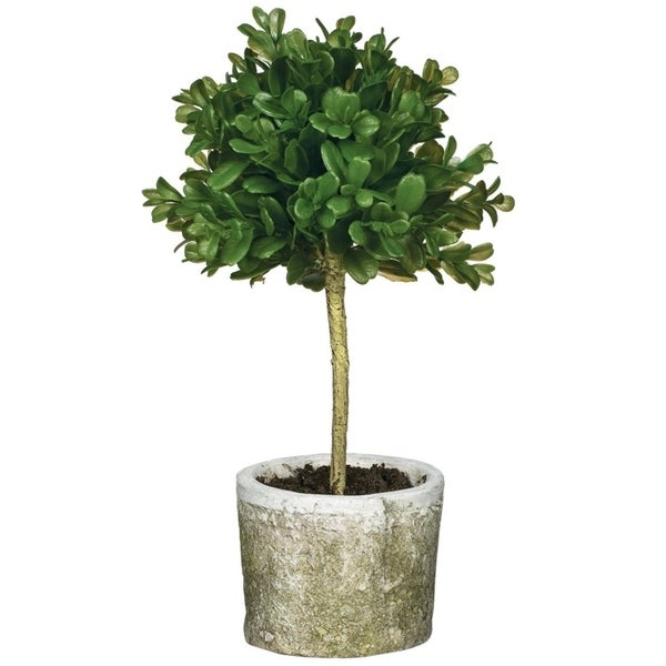 "Mini Round Boxwood Topiary - Green - 6""L x 6""W x 12""H"