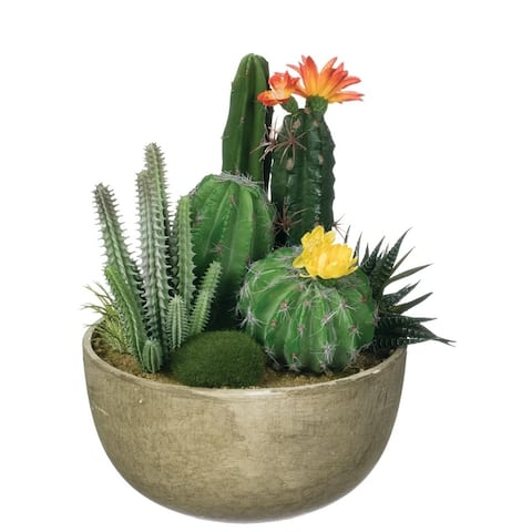 "Potted Cactus Garden Arrangement - Multicolor - 8.5""L x 7""W x 9""H"