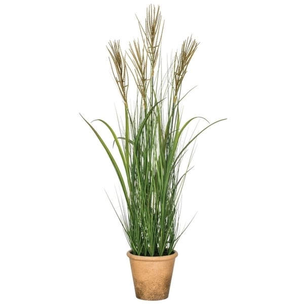 "Potted Silver Grass - Multicolor - 26""L x 26""W x 41""H"