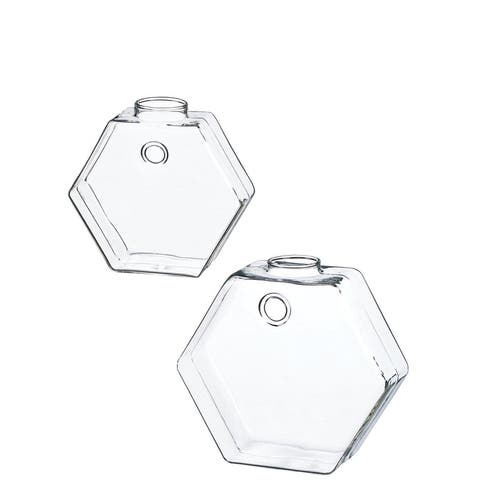 Hanging Glass Wall Vases - Set of 2