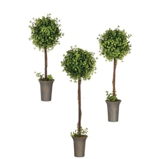 "Boxwood & Berry Topiaries - Set of 3 - Green - 10, 10, 10""L x 10, 10, 10""W x 31, 26.5, 25""H"