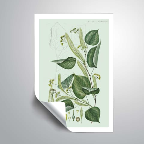 ArtWall Flower drawing 23 Removable Wall Art Mural