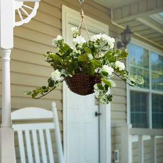 Pure Garden White Geranium Hanging Floral Arrangement with Basket