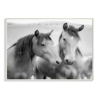The Stupell Home Decor Black and White Soft Graphite Look Two Horses Photograph, 10 x 15, Proudly Made in USA