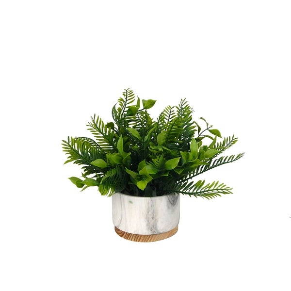 Fern and lemon leaf in marbled pot