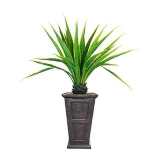 """Laura Ashley 67"""" Real Touch Agave Plant in Resin Planter"""