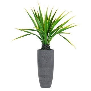 """Laura Ashley 69.5"""" Real Touch Agave Plant in Resin Planter"""