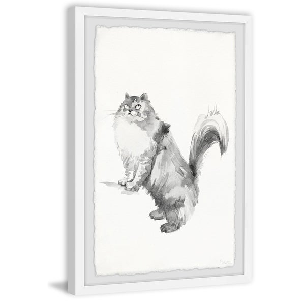 Handmade Gray Maine Coon Framed Print