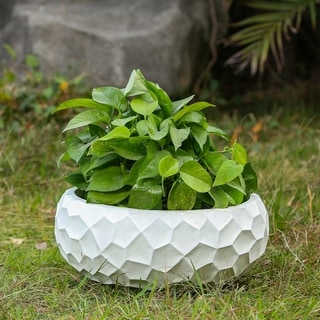 Link to 16.9in. Dia. MgO Fiberclay White Wavy Planter Similar Items in Planters, Hangers & Stands