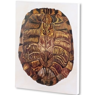 Mercana Tortoise Shell I  (42 X 56) Made to Order Canvas Art