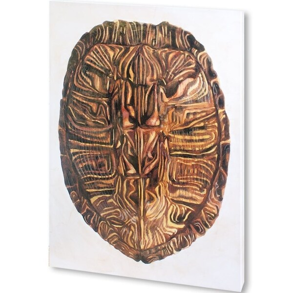 Mercana Tortoise Shell II (42 X 56) Made to Order Canvas Art