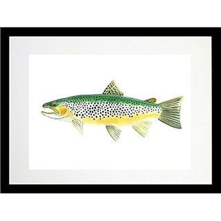 FRAMED Trout By Damon Crook  Graphic Art Print