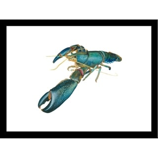 FRAMED Lobster II By Damon Crook  Graphic Art Print