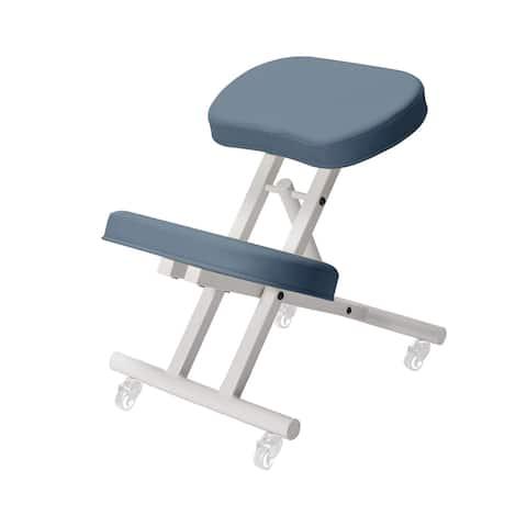 Master Healthy Star Program Steel Posture Chair Royal Blue