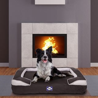 Sealy Dog Bed Cushy Cuddler Crushed Memory and Orthopedic Foam Dog Bed