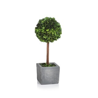 Link to Verdell 16-Inch Tall Ball Boxwood Topiary - Green Similar Items in Decorative Accessories