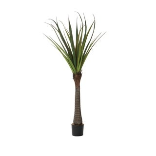 Laura Ashley 72 In. H Real Touch Agave Succulent