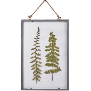 Glass Framed Ferns Wall Art Print