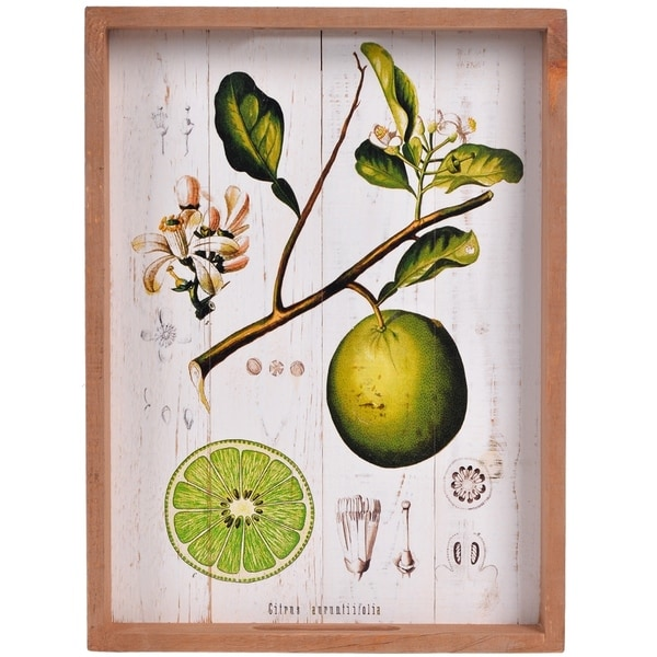 Decorative Wood Tray With Plant Print