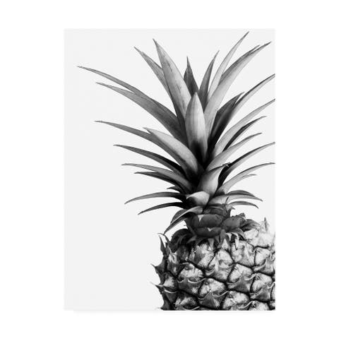 Lexie Gree 'Pineapple (BW)' Canvas Art