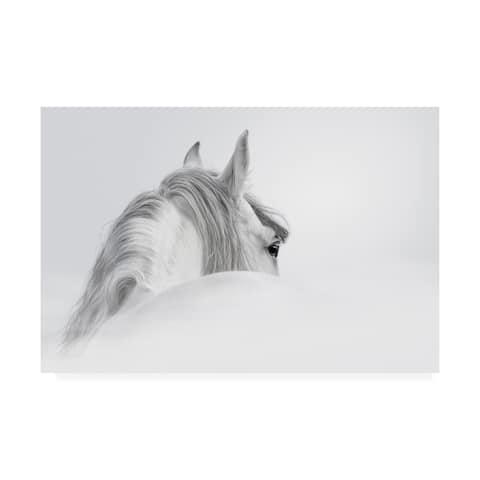 PhotoINC Studio 'White Horse On White' Canvas Art