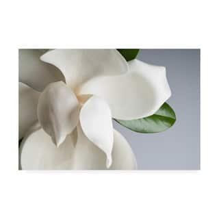 Porch & Den 'Magnolia White and Gray' Canvas Art