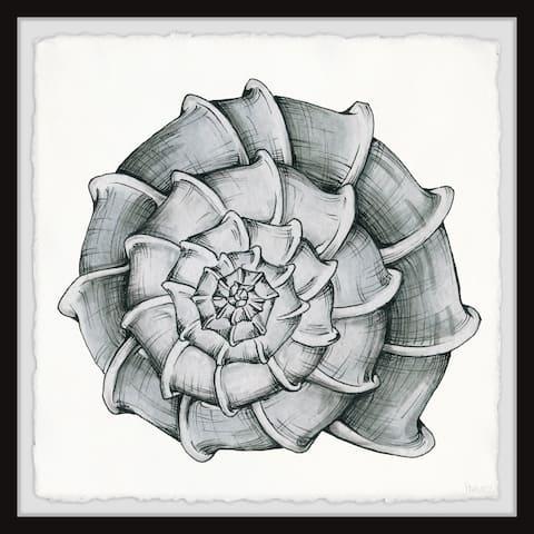Handmade Blooming Shell Framed Print