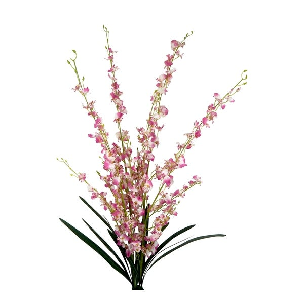 2 Bundles of Long Stem Orchid Sprays