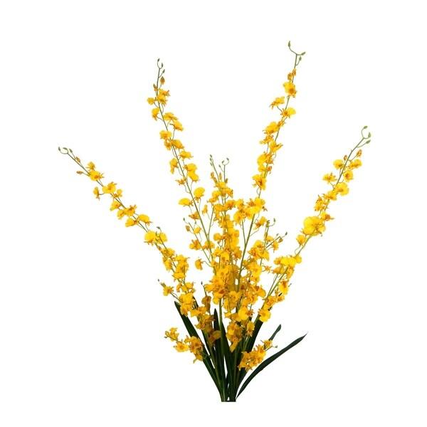 2 Bundles of Long Stem Orchid Sprays