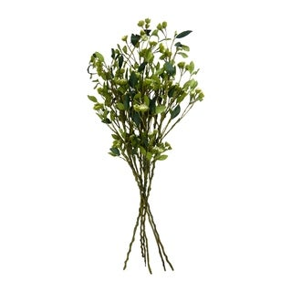 6 branches of long stem branches with leaves and seeds