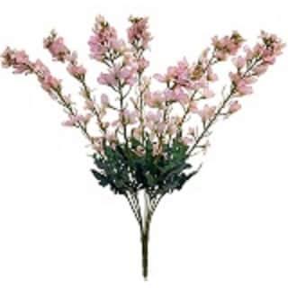 "25"" tall new delphinium bush x 7"