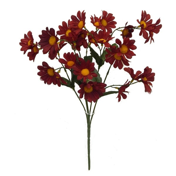 "16"" tall daisy bush x 5"