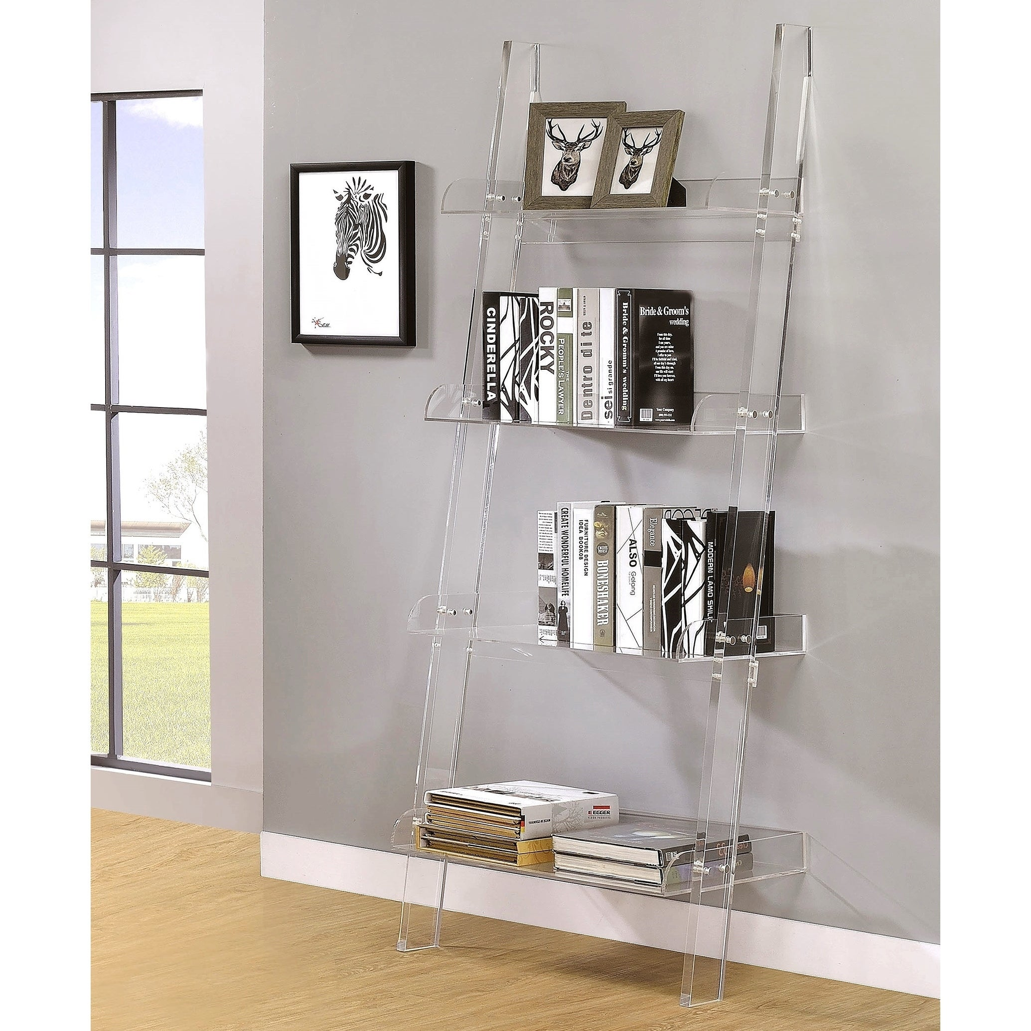 Clear Acrylic Modern Ladder Bookcase