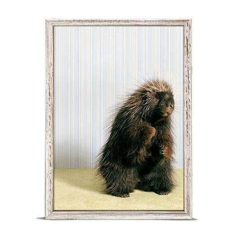 GreenBox 'Porcupine On Gray' by Catherine Ledner Mini Framed Art - 5 x 7
