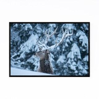 Noir Gallery Deer Forest Animal Austria Framed Art Print