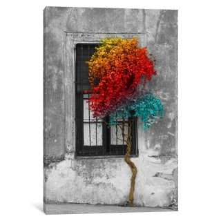 """iCanvas """"Tree in Front of Window Rainbow Pop Color Pop"""" by Panoramic Images"""