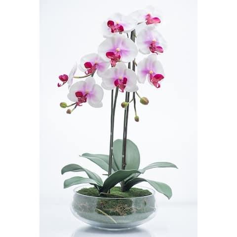 "Red Vanilla Lavender Phalaenopsis in Glass Centerpiece 24.5"" x 13.75"""