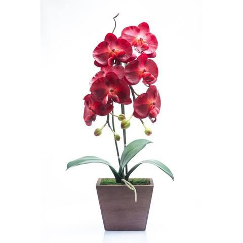 Red Vanilla Burgundy Phalaenopsis in Wooden Centerpiece