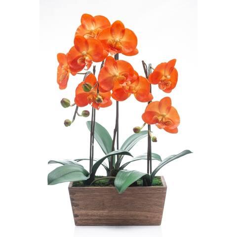 Red Vanilla Orange Phalaenopsis in Wooden Centerpiece