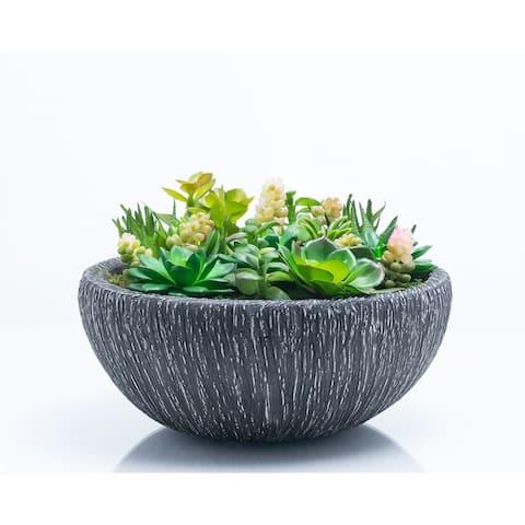 Red Vanilla Assorted Succulents in Grey Ceramic Centerpiece