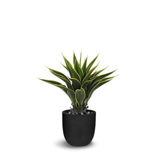 Agave Artificial Green/Yellow Faux Botanical - 30 Inch