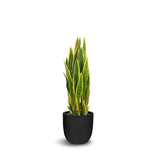 Sanseveria Artificial Green/Yellow Faux Botanical - 39 Inch