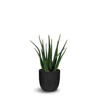 Aloe Artificial With Pot Faux Botanical - Green - 25 Inch