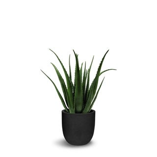Aloe Artificial With Pot Faux Botanical - Green - 34 Inch