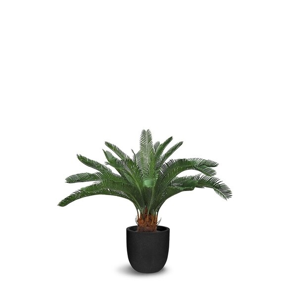 Cycas Artificial Faux Botanical - Green - 30 Inch