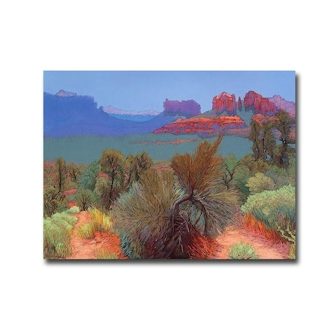 Mary Silverwood 'High Desert' Gallery Wrapped Canvas Giclee Art