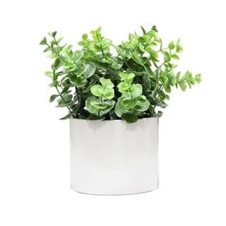 Artificial Eucalyptus Plant with Ceramic Pot. - Green