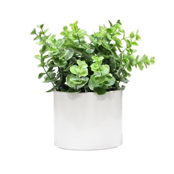 Artificial Eucalyptus Plant with Ceramic Pot. - Green
